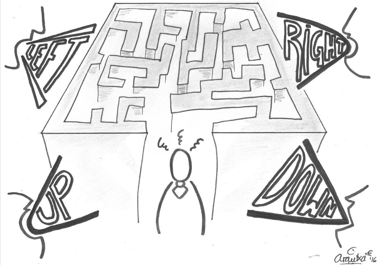 Founder's Syndrome Illustration 6. Arantxa Mandiola. CC BY 4.0